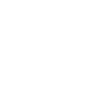 Lifeforce Logo (White)